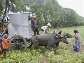 Figure 1: Transporting the sodar instrument via ox cart through a field to the platform near Rajshahi, Bangladesh. Photo credit: Harness Energy, and Fig. 20 in Jacobson et al. (2018).